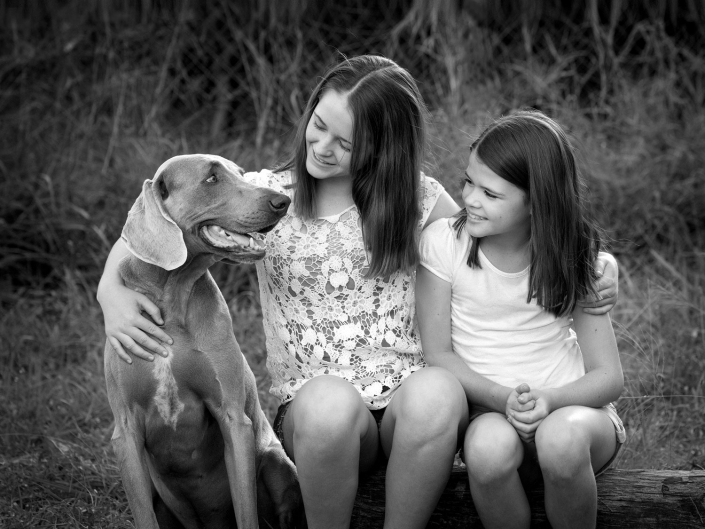 lovely sisters embrace each other and pet weimaraner