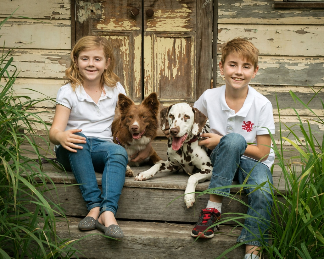 two young kids and their two dogs pose for photograph sitting on rustic tin shed in brisbane photography studio