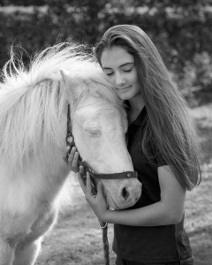 pet photography brisbane portrait horse