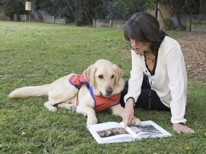 brisbane photography, pet photography, guide dogs, family photography, dog