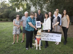 brisbane photography, pet photography, guide dogs, charity