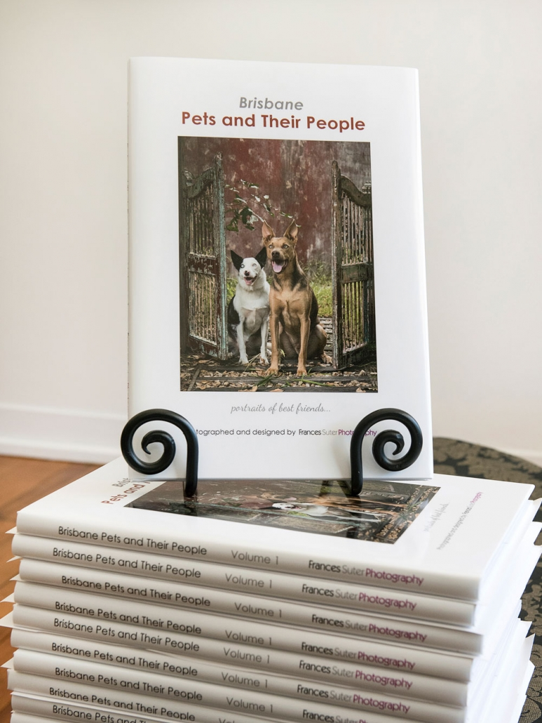 brisbane, photography, pet photography, guide dogs, charity