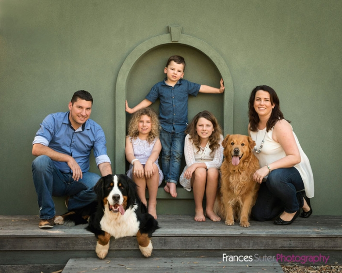 Family with three children sitting in olive green coloured archway with golden retriever and bernese mountain dog family portrait