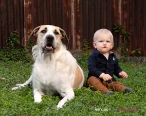 Coorparoo family portrait