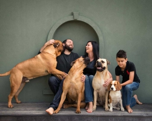 brisbane pets and dog friendly family photographer