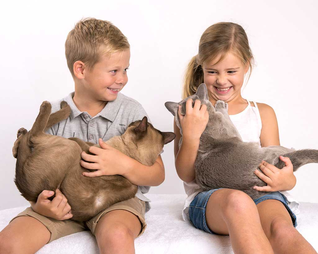 brother and sister family photos with pets coorparoo brisbane